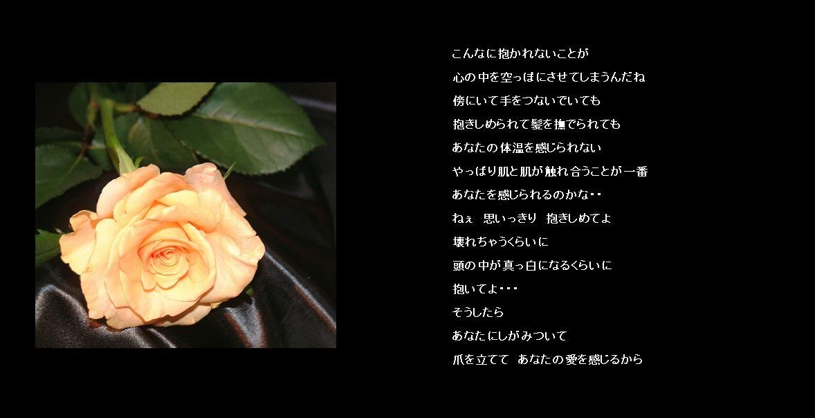 Dscf00861a_2008623
